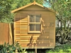 Workshed Design, No. 2036, Cedar Upgrade, Cedar Windows, Piers, No Verandah, Tree.jpg